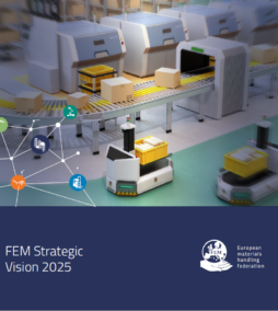 FEM Strategic Vision 2025